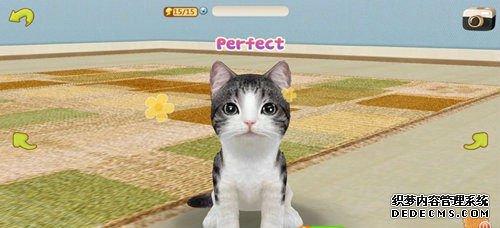 模拟养成游戏《掌中猫咪》双平台即将发布