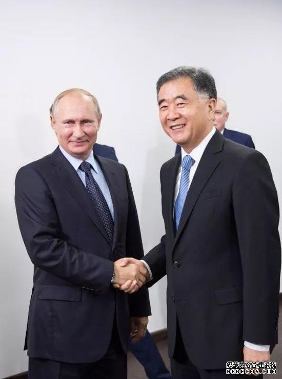普京(左)和汪洋(右)