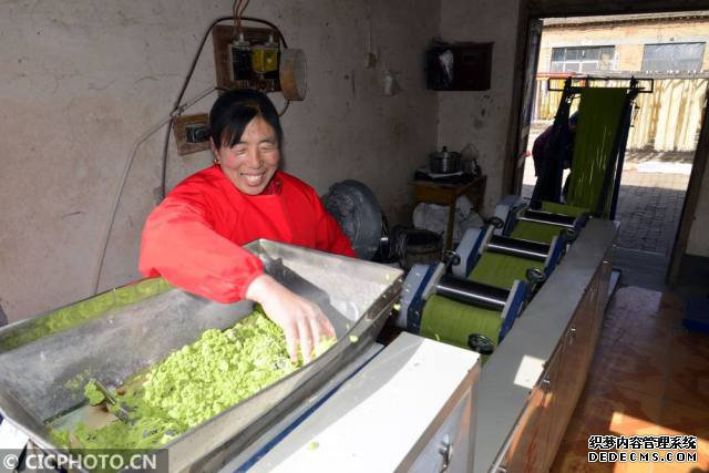 蔬菜面赤月传说私服条新春加工忙