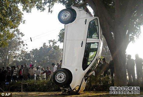 """司机上演""""疯狂赤月传说最新sf停车"""" 车身倒立靠大树(图)"""